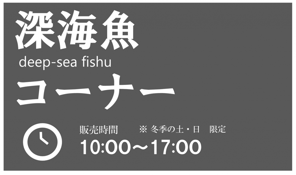 珍しい魚や、深海生物に触れてみよう!(期間限定)