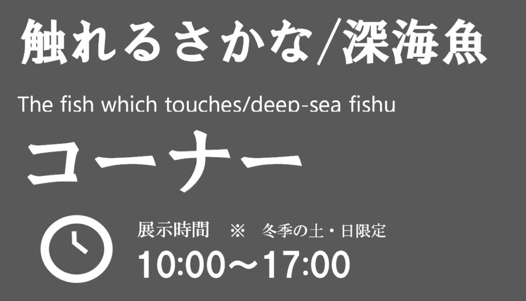 深海生物に触れてみよう!(期間限定)