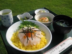 白えびお刺身丼 065