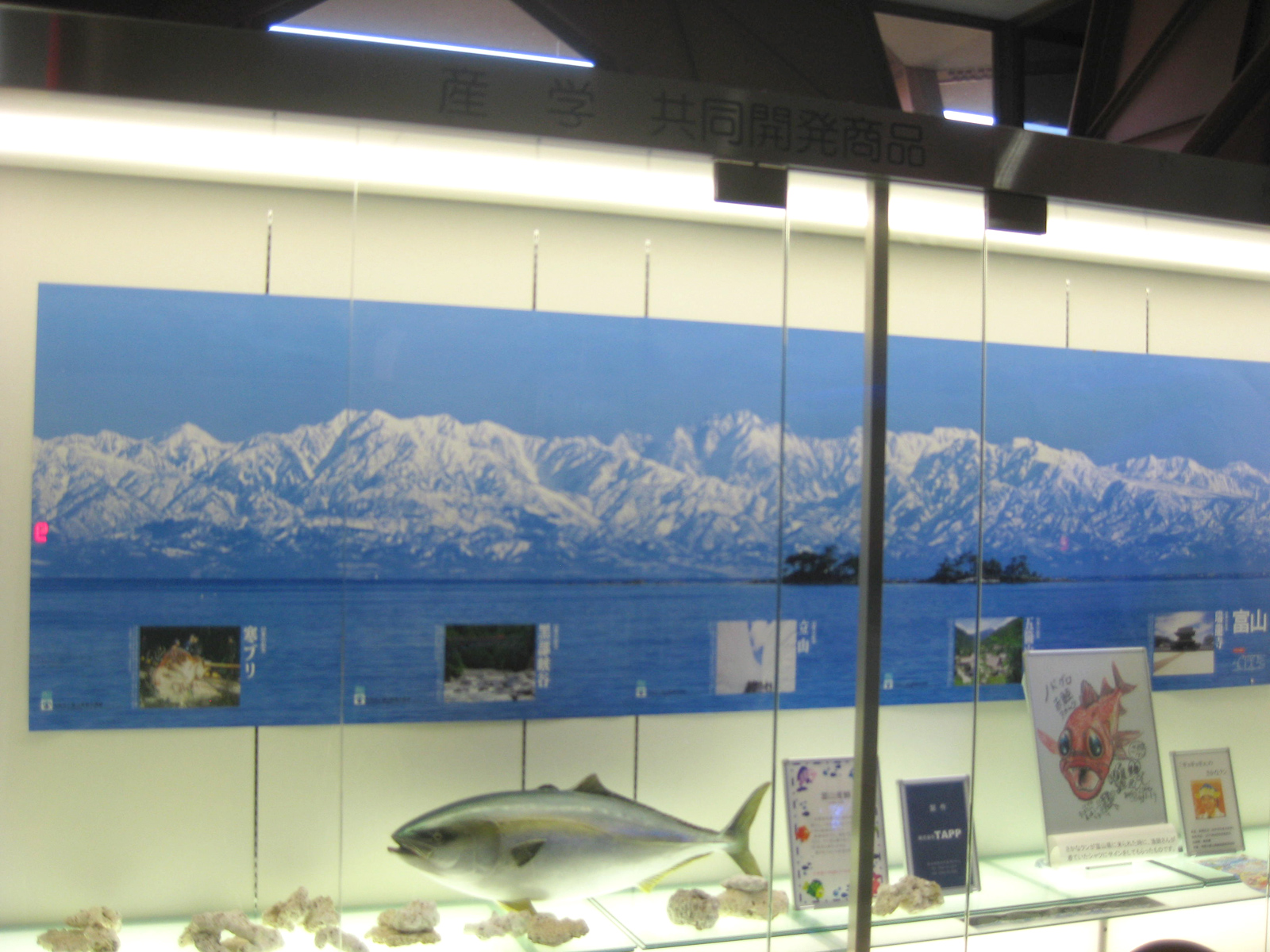 立山連峰のパノラマ写真